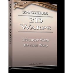 3D Warps