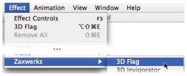 3D Flag Documentation